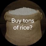 Rice (1)