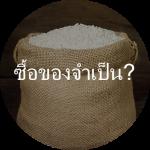 Rice_TH
